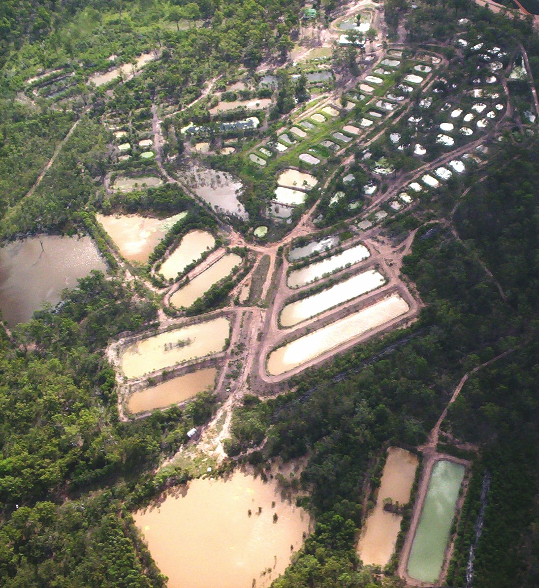 Seen from the air Ausyfish ponds